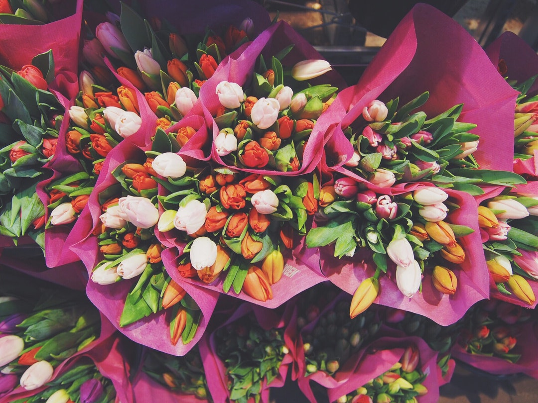 كيفية الحفاظ على الزهور الطازجة والجميلة