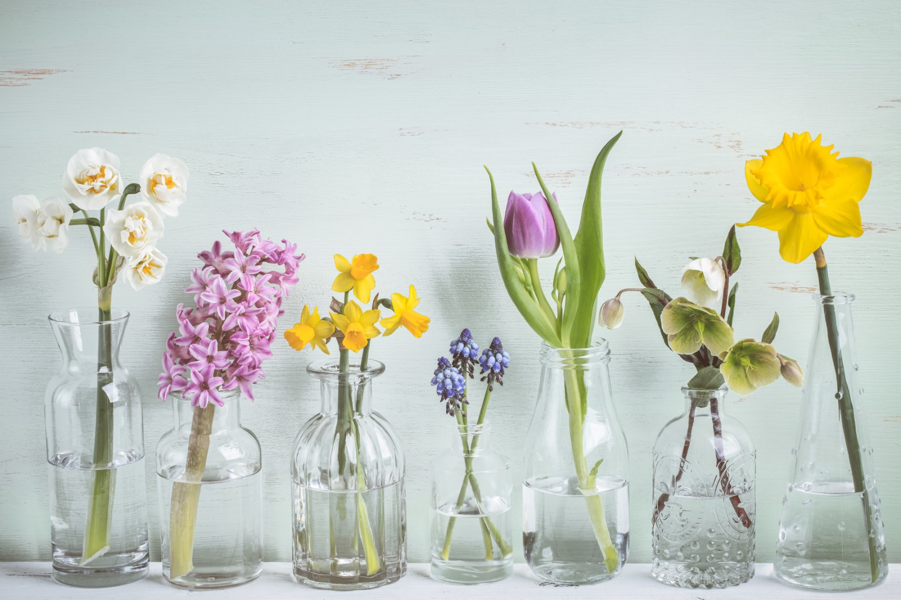 Types of Vases for Perfect Flower Arrangement